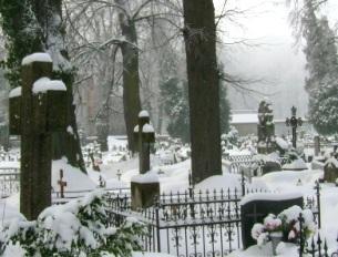 Cmentarz Gryfow 1