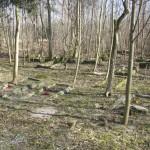 ruiny cmentarza ewangelickiego