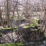 tak wygląda każy segment cmentarza
