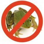 Jak stać się pożeraczem żab?