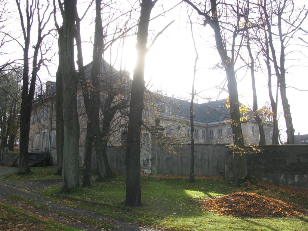 Pałac w Pobiednej 2