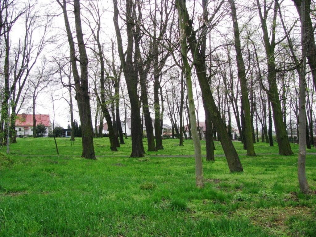 Cmentarz Braci Morawskich w Kruszynie.