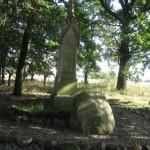 """Pomnik przy """"bydlęcej drodze"""" w Twardocicach"""